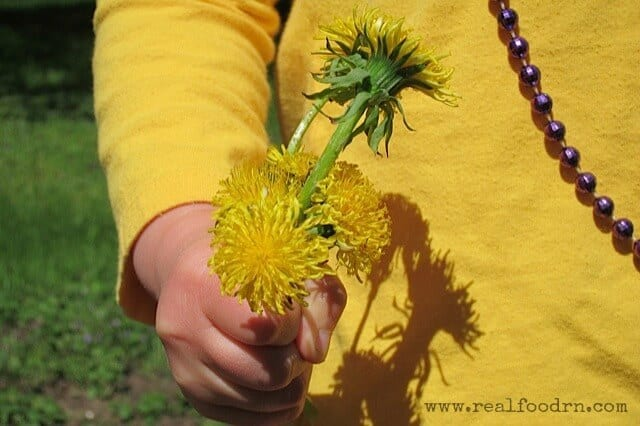 dandelions-and-chubby-fingers