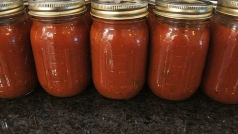 Homemade Pizza Sauce (to freeze)