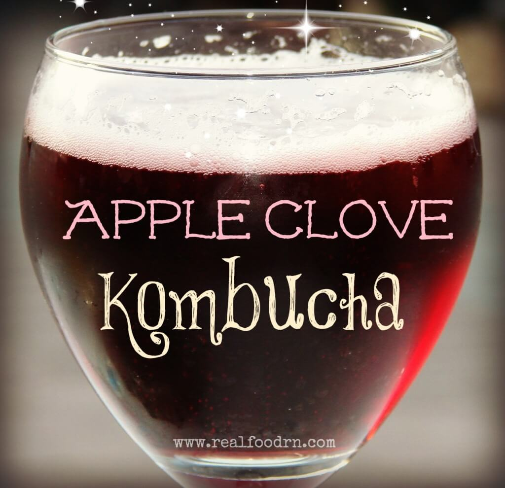 Apple Clove Kombucha | Real Food RN