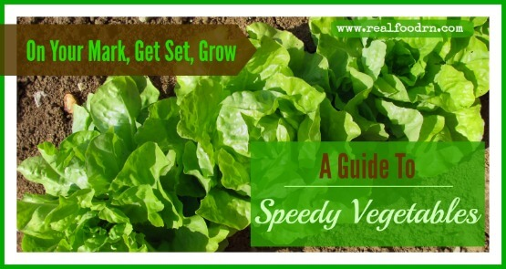 On Your Mark, Get Set, Grow: A Guide To Speedy Vegetables | Real Food RN