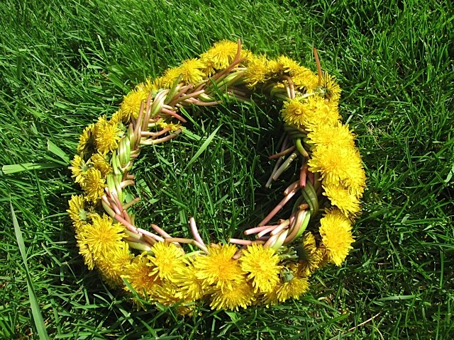 How To Make a Dandelion Crown | Real Food RN