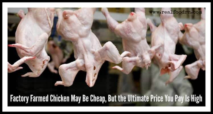 Factory Farmed Chicken May Be Cheap, But the Ultimate Price You Pay Is High | Real Food RN