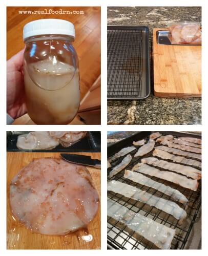SCOBY (1)