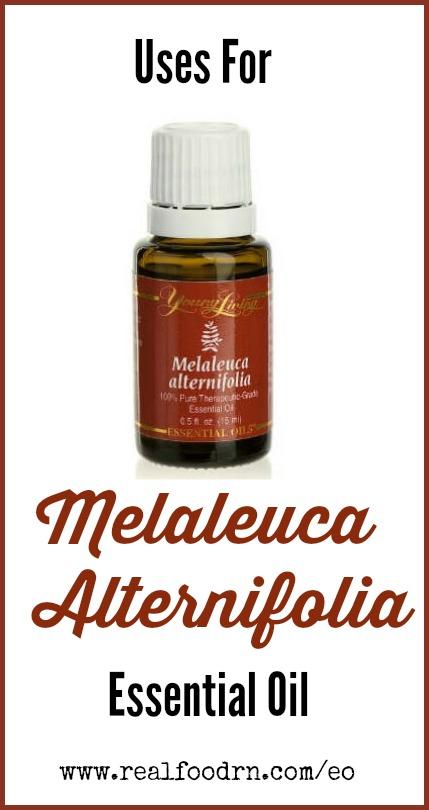 Uses for Melaleuca Alternifolia Essential Oil | Real Food RN