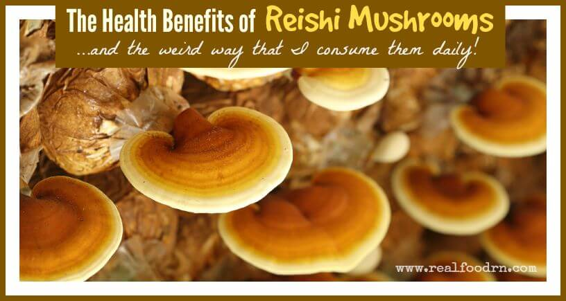The Health Benefits of Reishi Mushrooms | Real Food RN