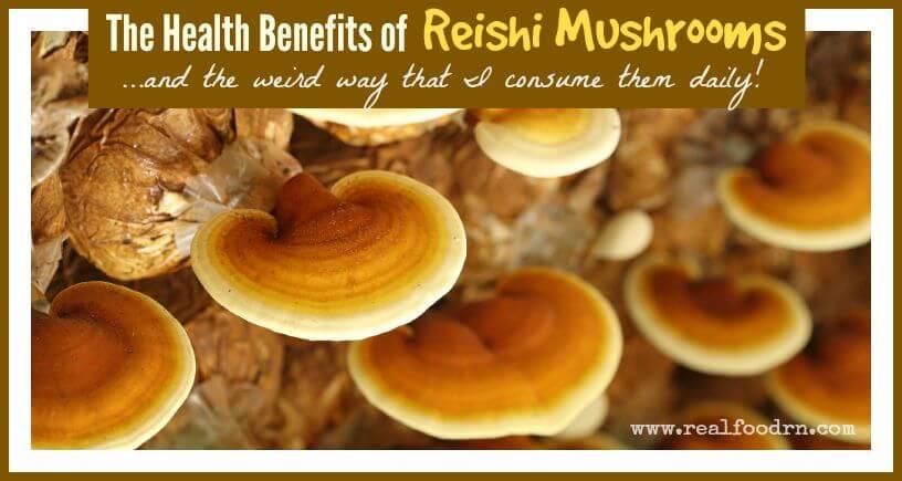 The Health Benefits of Reishi Mushrooms   Real Food RN
