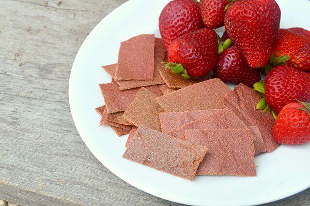 Homemade SCOBY Fruit Roll-Ups | Real Food RN