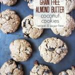 Paleo Cookie Roundup | Real Food RN