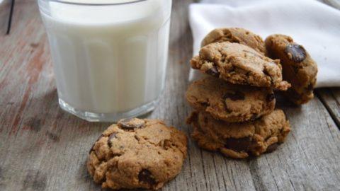Grain-Free Nieman Marcus Cookies