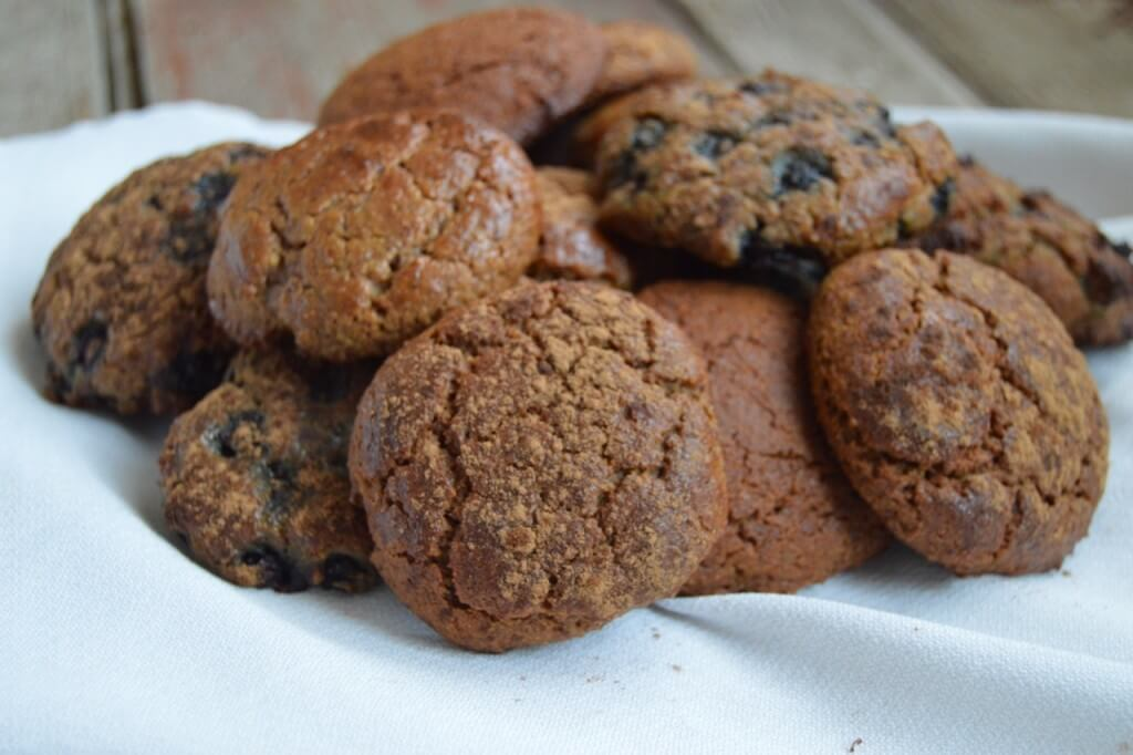 Easy Grain Free Biscuits (make them sweet or savory) | Real Food RN