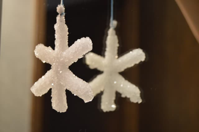How to Make Borax Crystal Snowflakes | Real Food RN