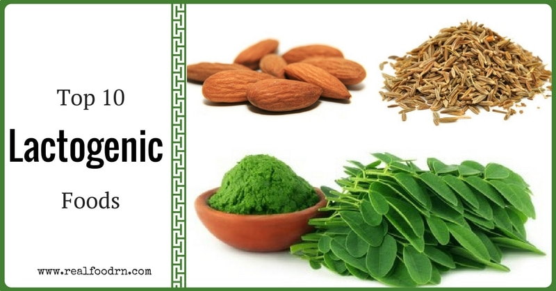 Top 10 Lactogenic Foods To Increase Breast Milk   Real Food RN