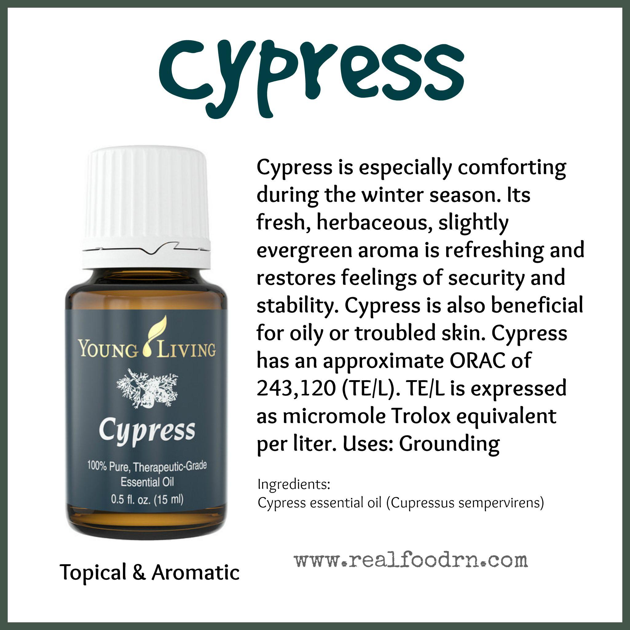 Cypress Essential Oil Pin