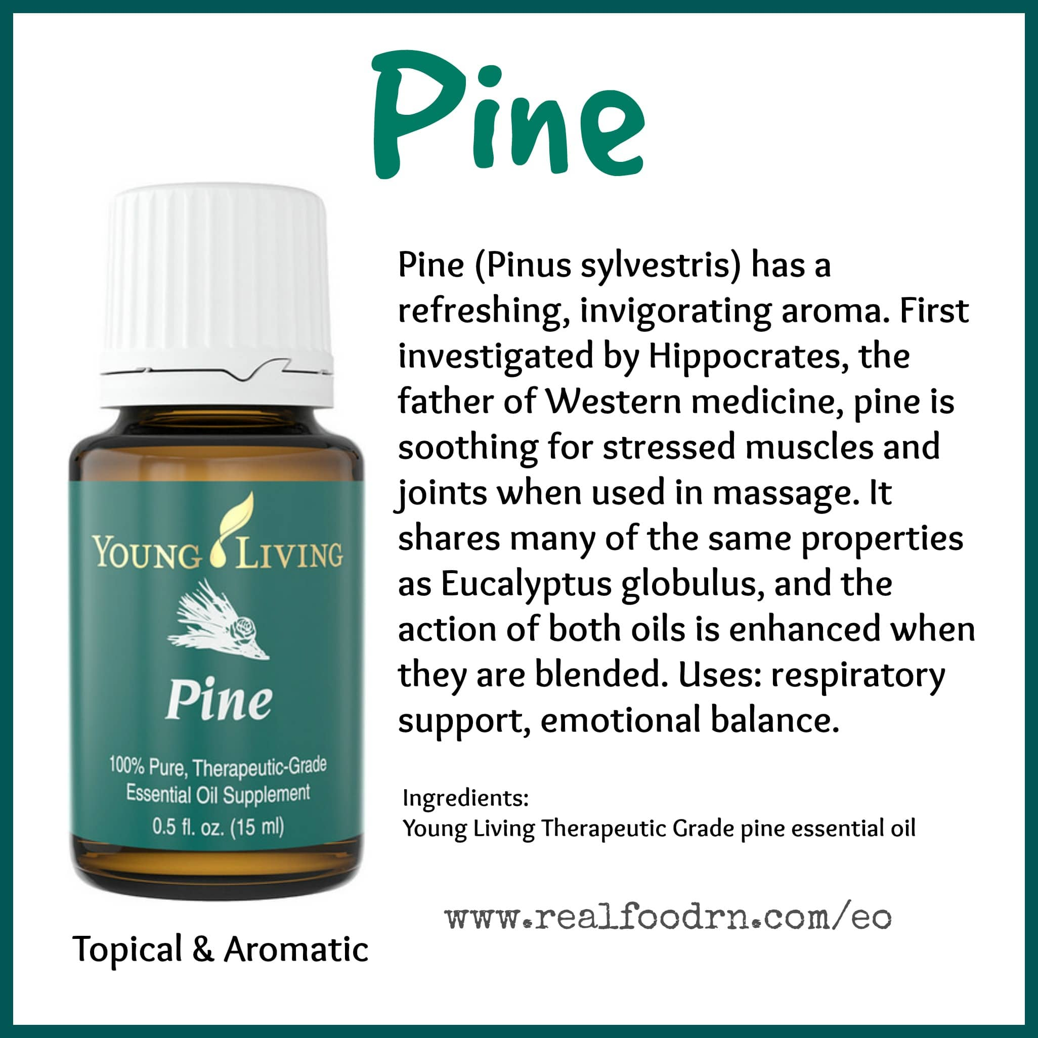 Pine Essential Oil Pin