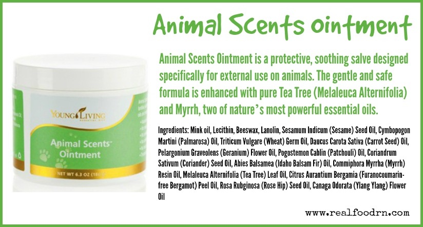 Animal Scents Ointment | Real Food RN