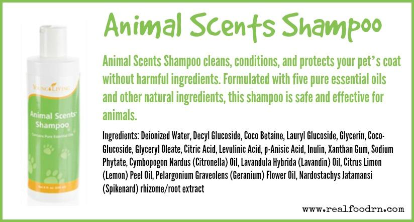 Animal Scents Shampoo | Real Food RN