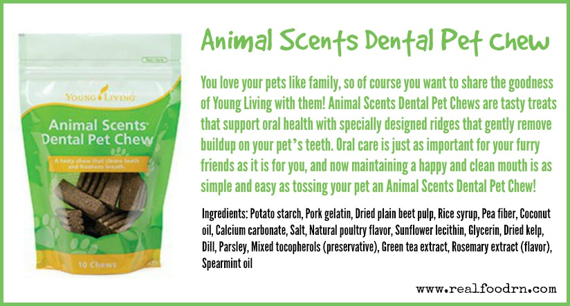 Animal Scents Dental Pet Chew | Real Food RN