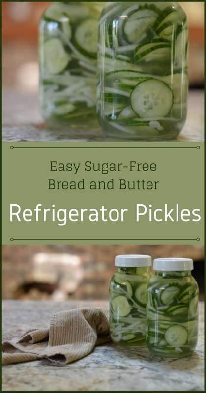 Easy Sugar-Free Bread and Butter Refrigerator Pickles   Real Food RN