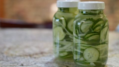 Easy Sugar-Free Crunchy Bread and Butter Refrigerator Pickles