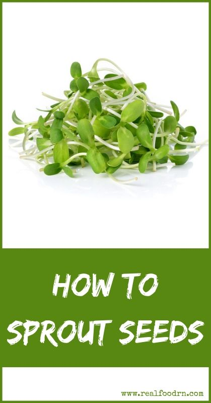 How to Sprout Seeds | Real Food RN