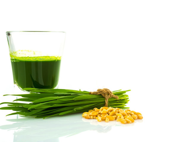 Is Wheatgrass Juice Safe for Gluten-Intolerant People