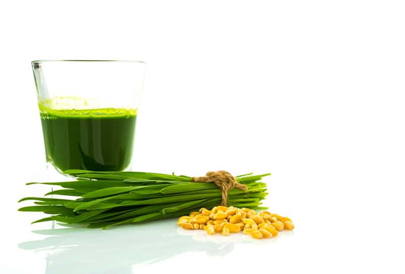 Is Wheatgrass Juice Safe for Gluten-Intolerant People? | Real Food RN