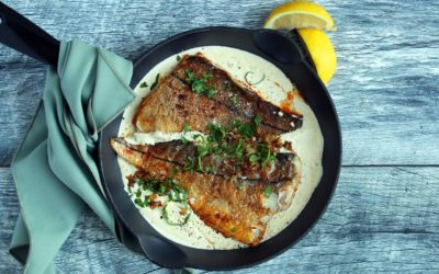 Paprika Fish with Herbed Sour Cream Sauce
