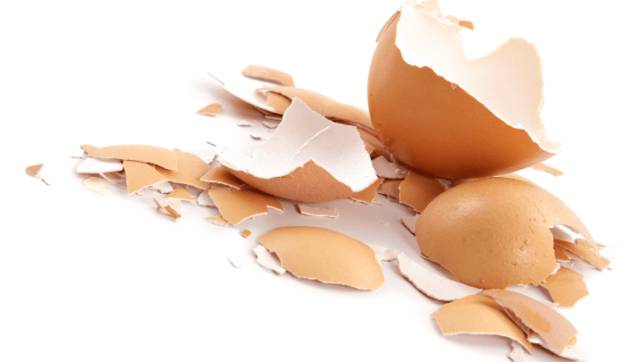 Abrasive Cleaning Powder (made from eggshells!)   Real Food RN